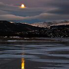 Moonrise in Colorado by bberwyn