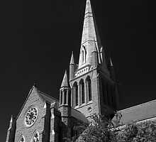 Sacred Heart Cathedral - Bendigo by Hans Kawitzki