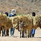 Saharan Nomads by Mark Phillips Photography