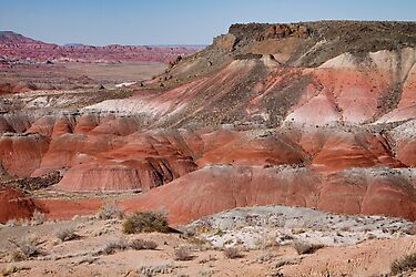 The Painted Desert  8013 by Bo Insogna
