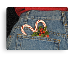 Holiday Pocket Canvas Print