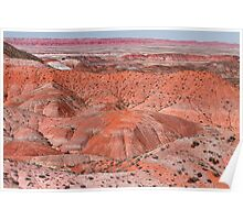 The Painted Desert  8078 Poster