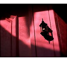 Pink Hideaway Photographic Print