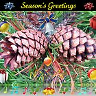 Riot of Colour Christmas Card with Cones by kathrynsgallery