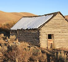 Lonely Miner's Cabin by John Butler