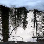 Frosty Reflection by ZenCowboy