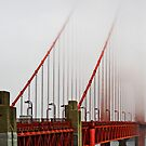 Golden Gate Bridge in Fog by Robyn Carter
