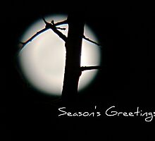 Seasons Greetings - Greeting Card 5 by Scott Mitchell