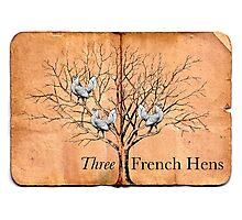 Three French Hens Photographic Print