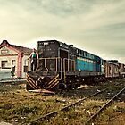 My Train by Henny Boogert