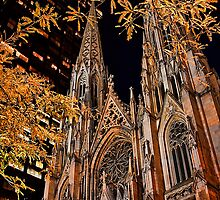 USA. New York. St. Patrick's Cathedral at night. by vadim19