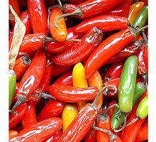 Peppers by Michael  Herrfurth