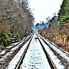Snow Tracks (HDR) by Jeff Ore