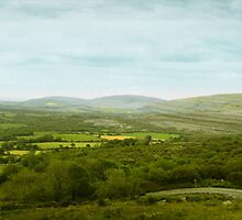 Ireland by Zoran Covic