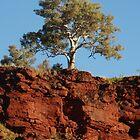 The Pilbara, Western Australia by Dan & Emma Monceaux