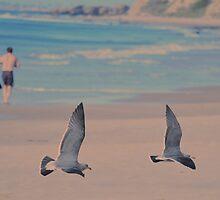 beachcombers by Matt Goldberg
