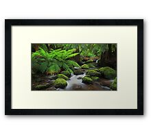 Taggerty Dreaming. Framed Print