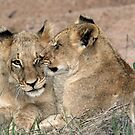 Brotherly love! by jozi1