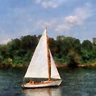 A Beautiful Day For a Sail by Susan Savad