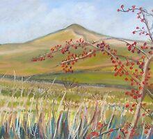 Sharphaw by Susan Duffey