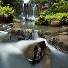 Mokoroa Falls Collection # 2 by Michael Treloar