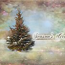 Season's Greetings by Teresa Zieba