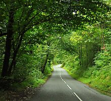 Road to Betws-y-Coed by Imran Azhar