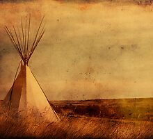 The Old West by Alyce Taylor