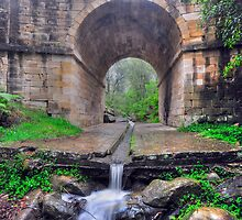 The Oldest Bridge by Terry Everson
