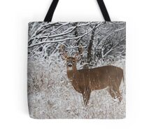 White-tailed Buck in Snow Tote Bag