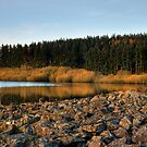 Alwen Reservoir: Take 3 by Aggpup