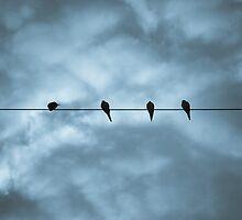 String Quartet by PHLBike