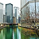 The Chicago River by James Watkins
