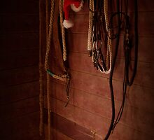 December Tackroom by Penny Kittel