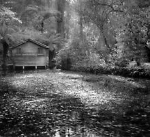 Boathouse  by Christine  Wilson Photography