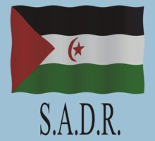 Western Sahara flag by stuwdamdorp