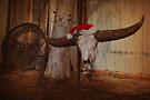 Buffalo Christmas by kurrawinya