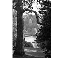 Stourhead Photographic Print
