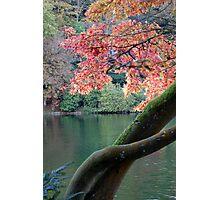 Autumn at Stourhead Photographic Print