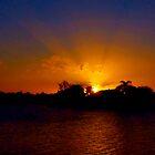 Sunset excess by Glenn Cecero