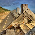 Steps to the beach by Ian Merton