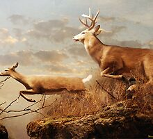 Deer crossing a gorge by Norman Rawn