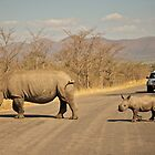 Rhinos by Tweety300