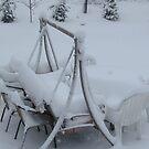 winter in my backyard by ANNABEL   S. ALENTON
