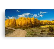 Fall Rural Roads Canvas Print