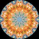 A Beautiful Thing 01 Kaleidoscope by fantasytripp