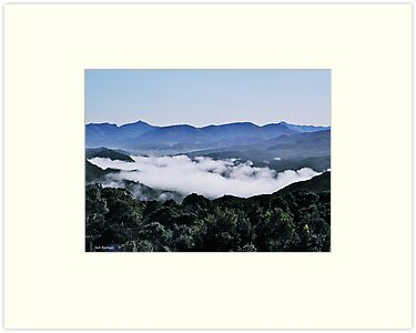 Misty Mountains by Judi Rustage