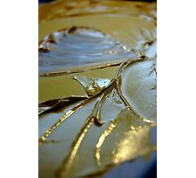 Gold on water Photographic Print
