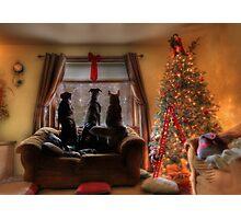 Watching for Santa Photographic Print