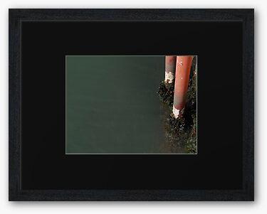 Framed print, black matte and charcoal box frame